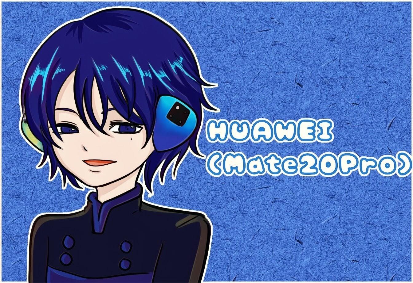 HUAWEI Mate 20 Proとは?