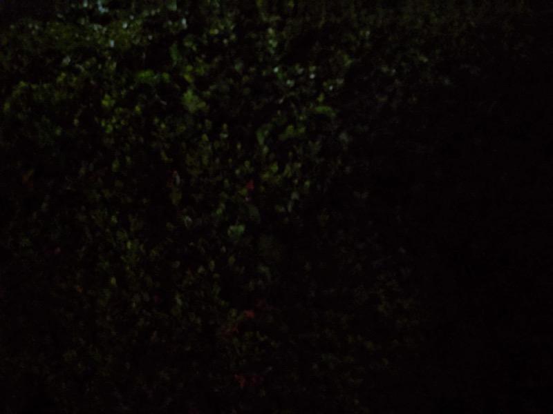 夜景モード 失敗